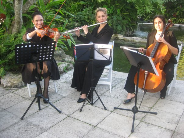 Flute, Violin and Cello Trio